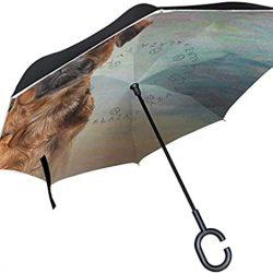 Parapluie Homme rétro avec poignée en Forme de C pour Voiture, Femme et Homme