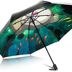 Parapluies Totoro