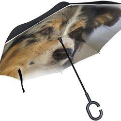 Parapluie Tikismile inversé pour chien berger avec poignée en forme de C
