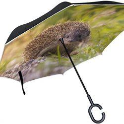 Parapluie XiangHeFu Double Couche inversé inversé parapluies Animaux hérisson Jungle Plian