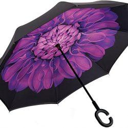 Parapluie Femme Inverser Inversé Manuel Ouvert Violet Daisy Double Couche Autonome Mai