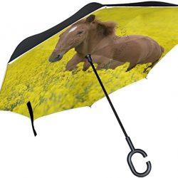Parapluie XiangHeFu Double Couche symétrie Inversée parapluies Cheval Le Champ d'pliant Co