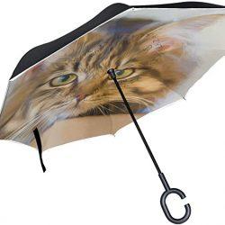 Parapluie Tikismile inversé pour chat avec poignée en forme de C