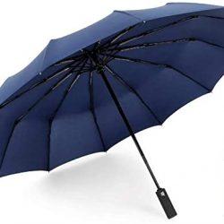 Parapluie Femme 12 Baleines 210T Pliant Compact Ouverture et Fermeture Automatique Par